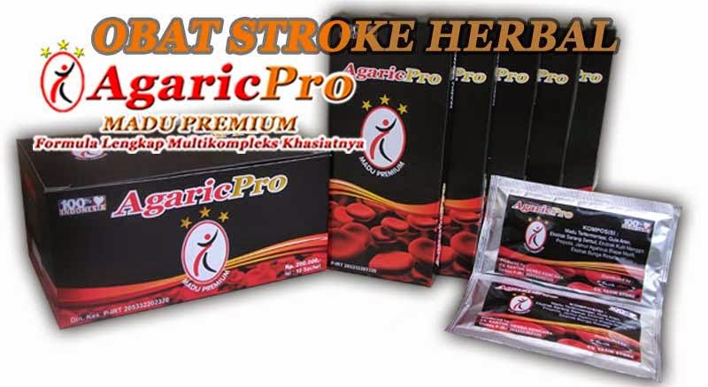 obat penyakit stroke herbal