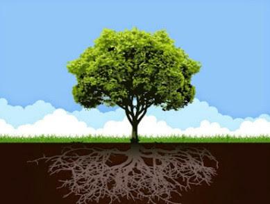 Menyuburkan Pohon Takwa