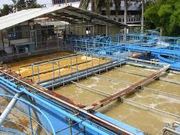 Pengelolaan Limbah Secara Organik dan Ramah Lingkungan