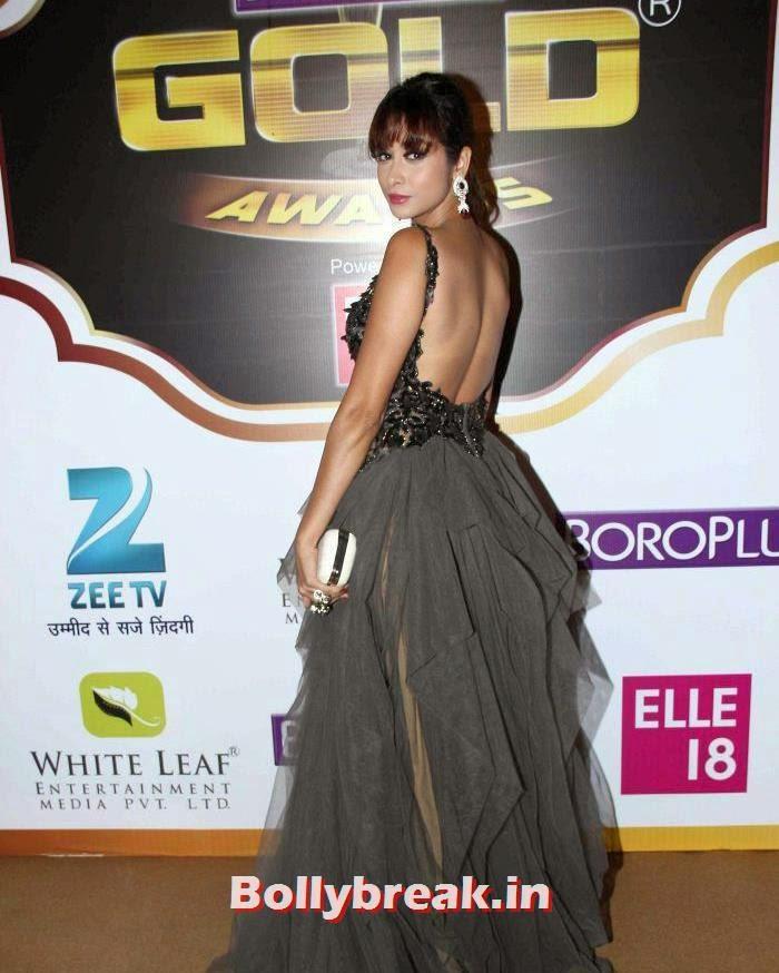 Madhura Naik, Popular Tv Actresses on The Red Carpet of 7th Boroplus Gold Awards