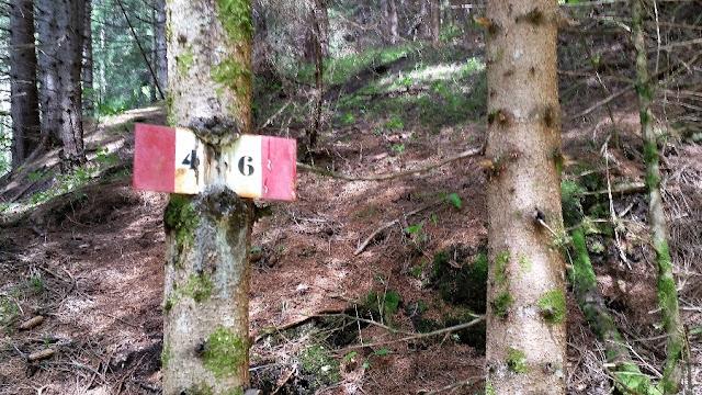 trekking san vito di cadore