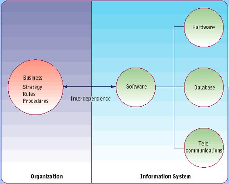 Information system in business organisation