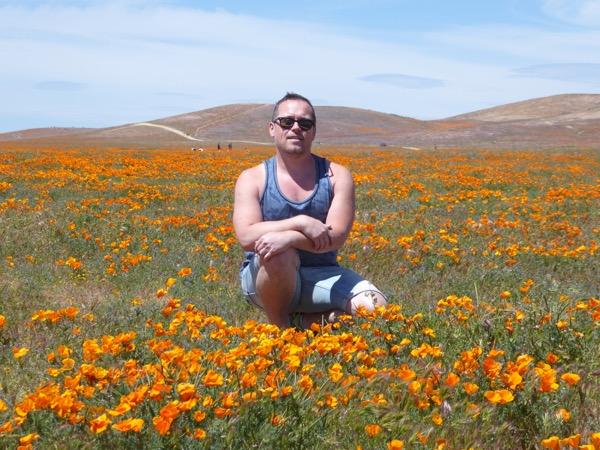 Antelope Valley wildflower bloom