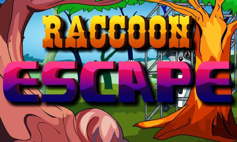 Play  NsrGames Raccoon Escape