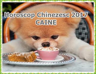Horoscop Chinezesc 2017 CAINE