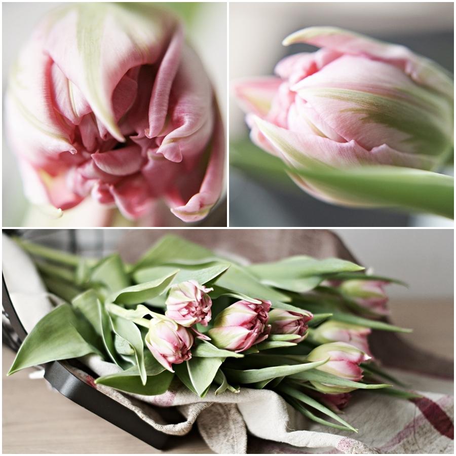 FLOWERDAY - Ein Hauch von Rosa