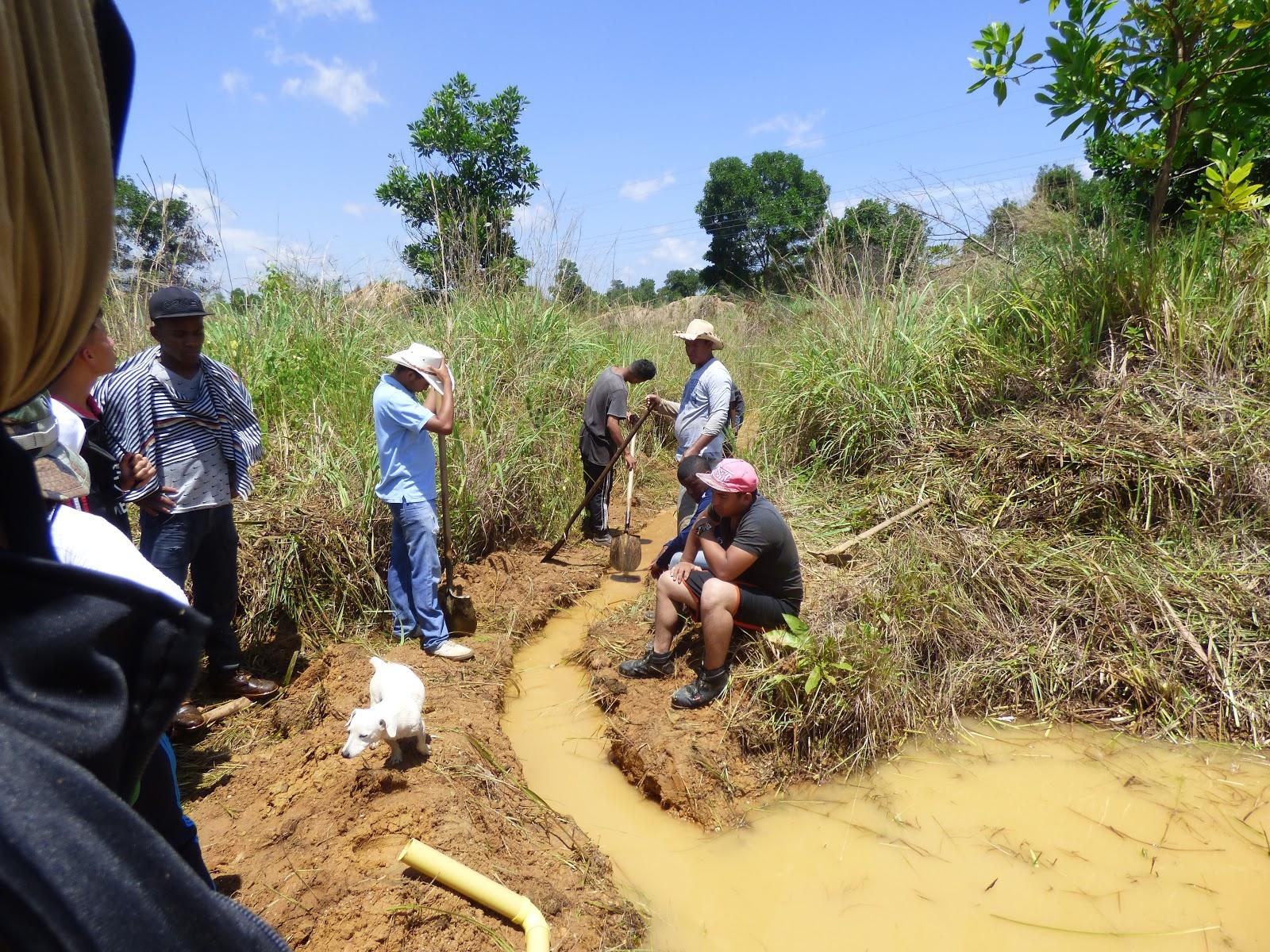 Bagre acuicola practica en construcci n de estanques for Construccion de estanques acuicolas