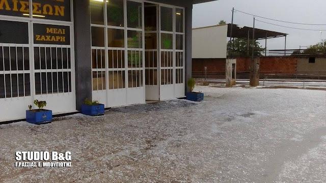 Οι πρώτες εικόνες από τη σφοδρή χαλαζόπτωση στο Κουτσοπόδι