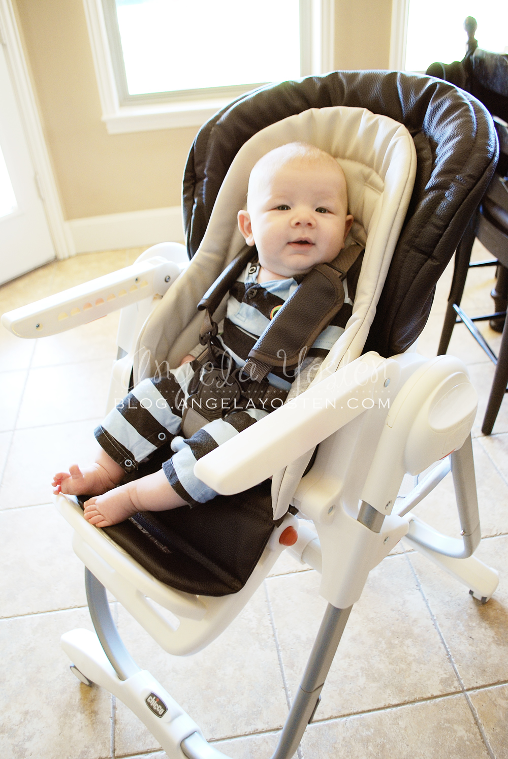 Less bulky and you can instantly get the food mess away from baby without having to remove him from the chair.  sc 1 st  Angela Yosten & Angela Yosten: MOM Reviews - Chicco Polly Magic Highchair