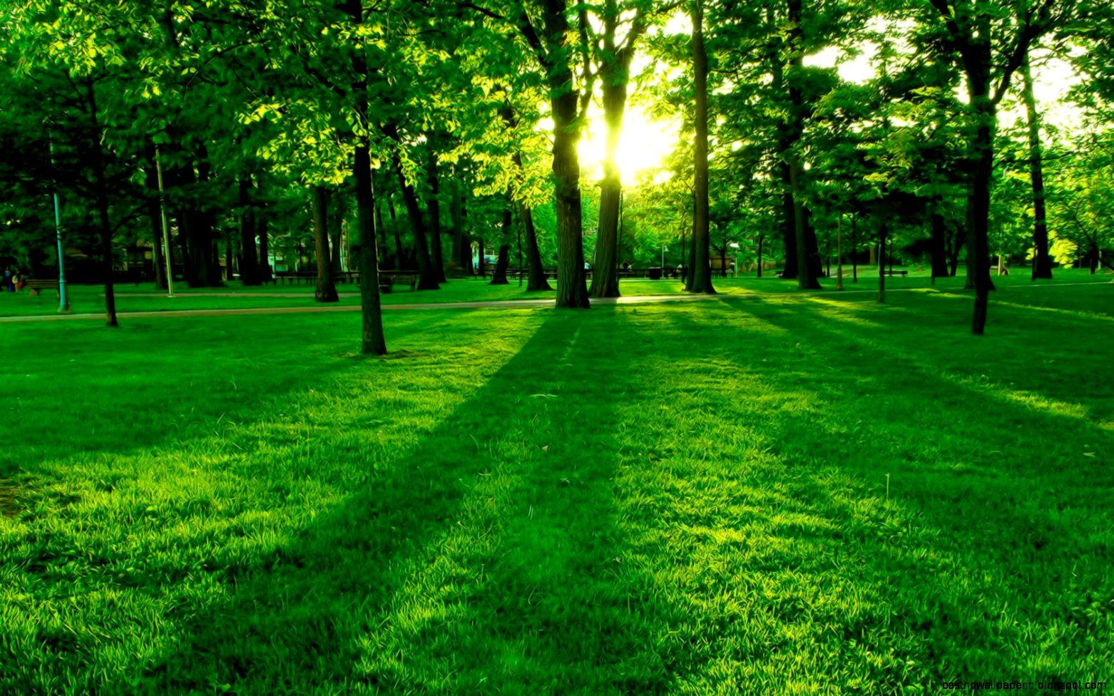 Landscape Wallpaper High Definition | Best HD Wallpapers - photo#11