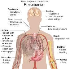 cara mengobati penyakit paru paru