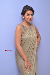 Nikki Galrani in Saree 059.JPG