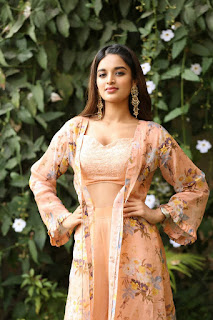 Beautiful Nidhhi Agerwal - Traditional Dress  IMAGES, GIF, ANIMATED GIF, WALLPAPER, STICKER FOR WHATSAPP & FACEBOOK