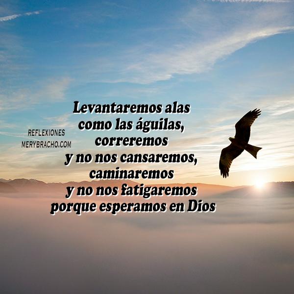 imagen con reflexion cristiana de las águilas mery bracho