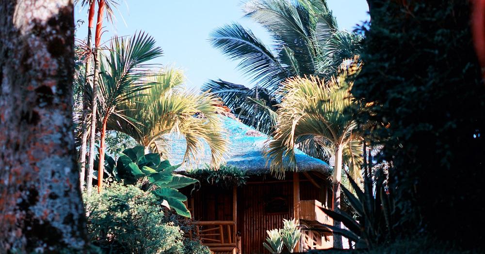 Oyster Forest Life Resort - Tagaytay
