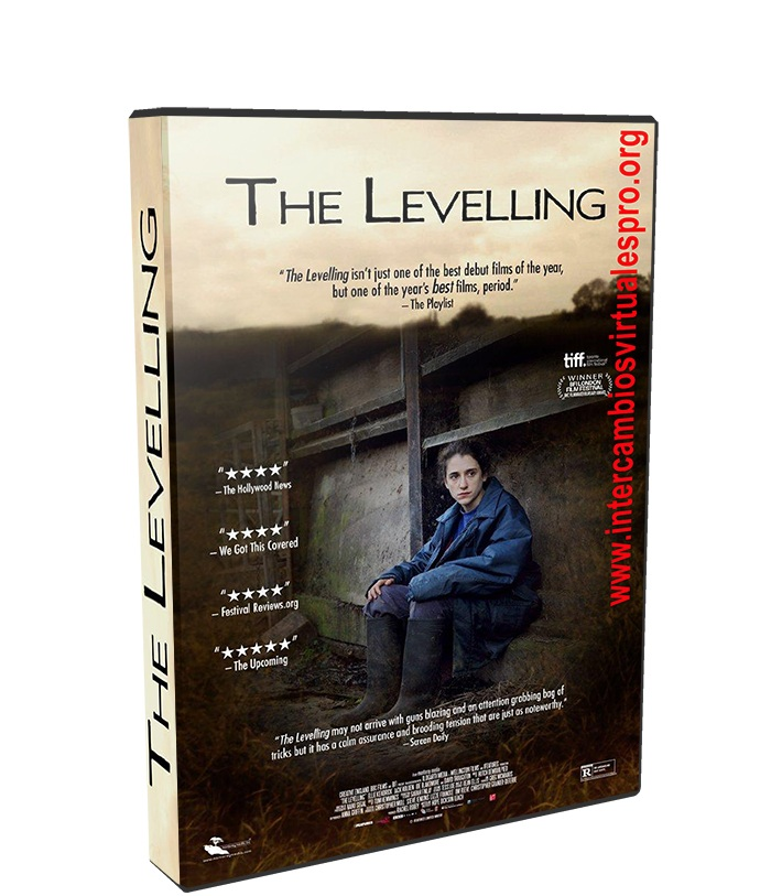 The Levelling poster box cover