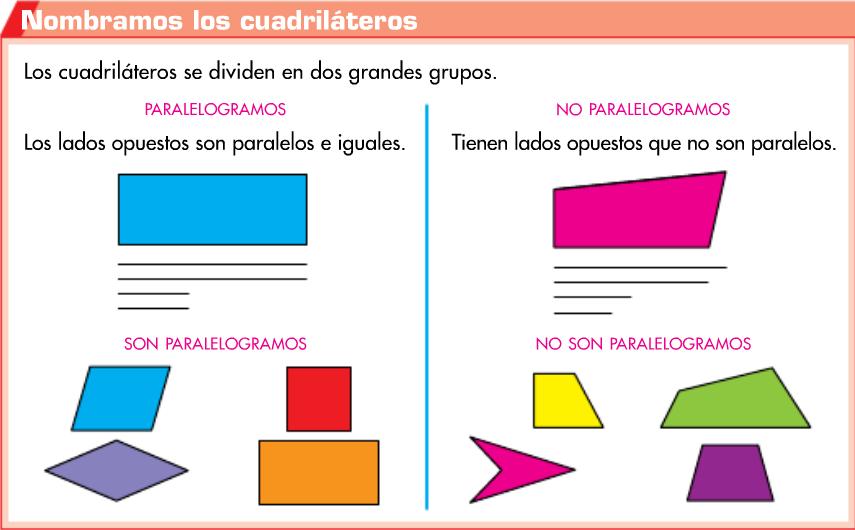 http://www.primerodecarlos.com/TERCERO_PRIMARIA/mayo/Unidad12/matematicas/actividades/cuadrilateros/visor.swf