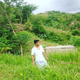 Mengelilingi Hutan Luas Di Banten Selatan