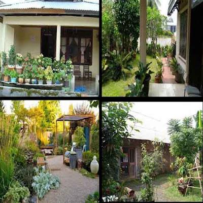 Menangkap Peluang Bisnis dari pekarangan rumah yang sempit