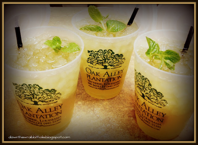 Mint Julep drink, bourbon drink, mint drink, Oak Alley plantation, New Orleans drink