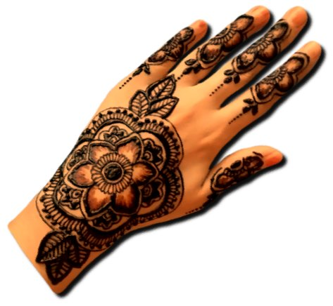 Indian Beautiful Back Hand Design