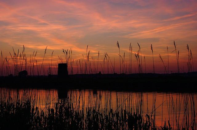 Norfolk Broads,the prettiest river journeys in Europe