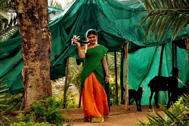 💄 Love birds tamil mp3 songs download masstamilan   Love
