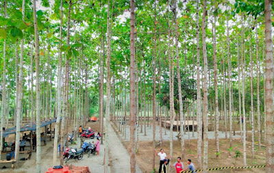 Tempat Wisata Adventure Kawung 3 Bojong Rangkas Cikarang