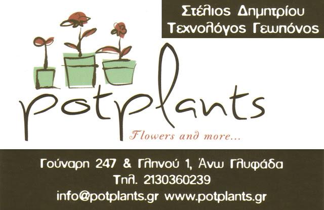 POT PLANS
