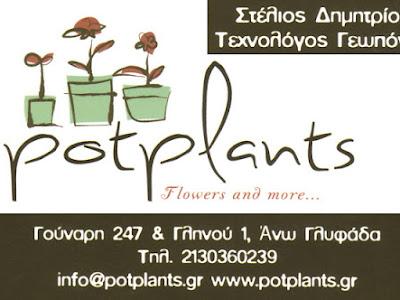 POT PLANTS > Στέλιος Δημητρίου > Flowers > Φυτά > Φυτώριο> Αυτόματο > Πότισμα > Γλάστρες >  Αυτόματο > Πότισμα > Γλάστρες > Χώματα > Λιπάσματα > Δέντρα > Θάμνοι > Γκαζόν > Συντήρηση > Κήπων > Κατασκευή > Φυτοπροστασία >Βιολογικά > Ειδικές > Κατασκευές > Φροντίδα > Κάκτοι > Εποχιακά > Αρωματικά > Σπόροι > Compost > Εργαλεία > Είδη > Κήπου > Technoplastic > Αρχιτεκτονική > Κήποι >  Gardena > Φυτοnet > Βολβοί > Πλουμέρια > Τροπικά > Ορχιδέα > Κέντια > Καρποφόρα > Διαμορφωμένα > Γούναρη > Γλυφάδα > Ελληνικό > Αργυρούπολη > Ηλιούπολη > Δάφνη > Υμηττός > Βούλα > Βάρη > Βουλιαγμένη > Κορωπί > Άλιμος > Καλαμάκι > Παλαιό Φάληρο > Νότια Προάστια .