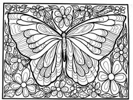 Best coloring page butterfly