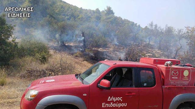 Πολύ επικίνδυνη πυρκαγιά πρόλαβε η πυροσβεστική στην Επίδαυρο