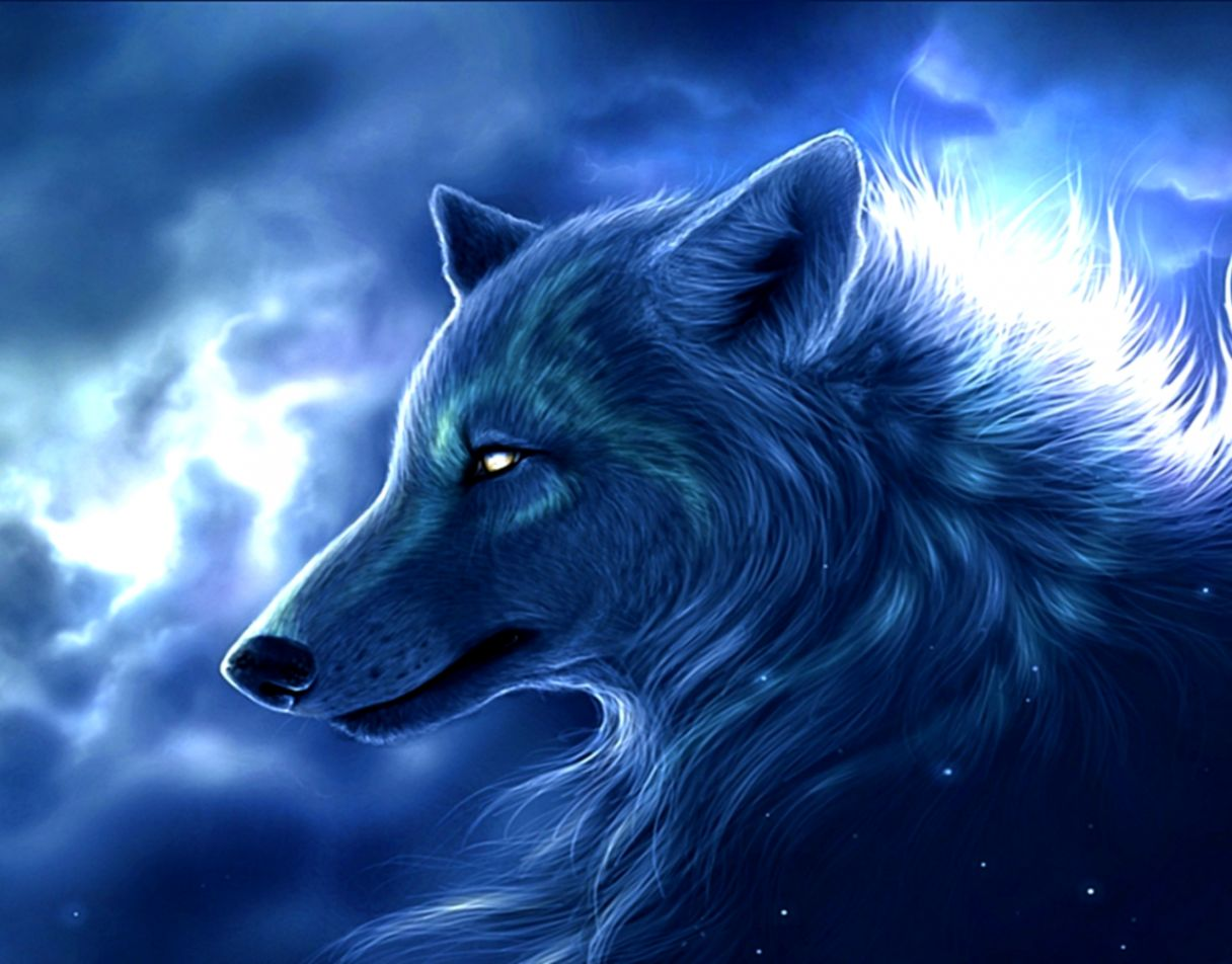 beautiful design 3d wolf wallpaper arctic s and background images