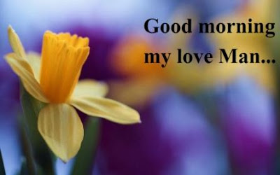 good morning images for boyfriend lover - Daffodil flower images