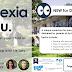 Dyslexia & You