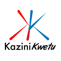 Job Opportunity at KaziniKwetu, Accountant