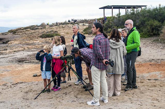 Grupo de observadores de aves marinas en es Carnatge