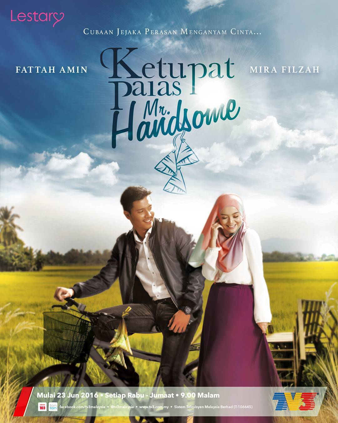 Sinopsis Ketupat Palas Mr Handsome (TV3)