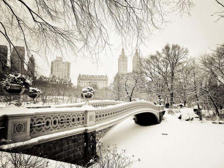 1. Have a Nice Walk - Top 10 Things to See and Do in Central Park, NYC