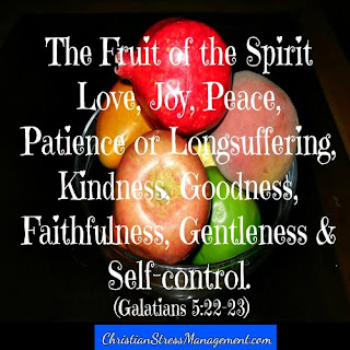The fruit of the spirit is love, joy, peace, patience, kindness, goodness, faithfulness, gentleness and self control. Galatians 5:22-23