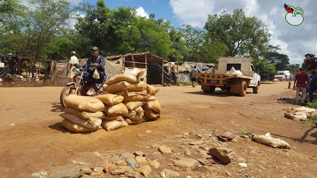 Anarquía e impunidad al sur del estado Bolívar deja en evidencia poder del pranato