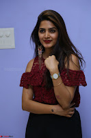 Pavani Gangireddy in Cute Black Skirt Maroon Top at 9 Movie Teaser Launch 5th May 2017  Exclusive 070.JPG