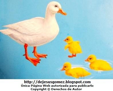 Imagen de patos nadando en el agua con sus crías. Patos de Jesus Gómez