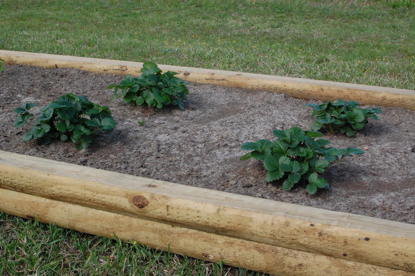 Landscape Timber Flower Bed Designs Ideas