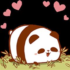 Panda Paddy 2