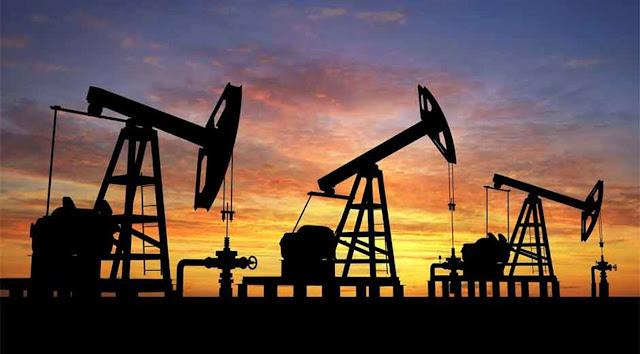 Advierten que es probable la salida de Pdvsa de la OPEP