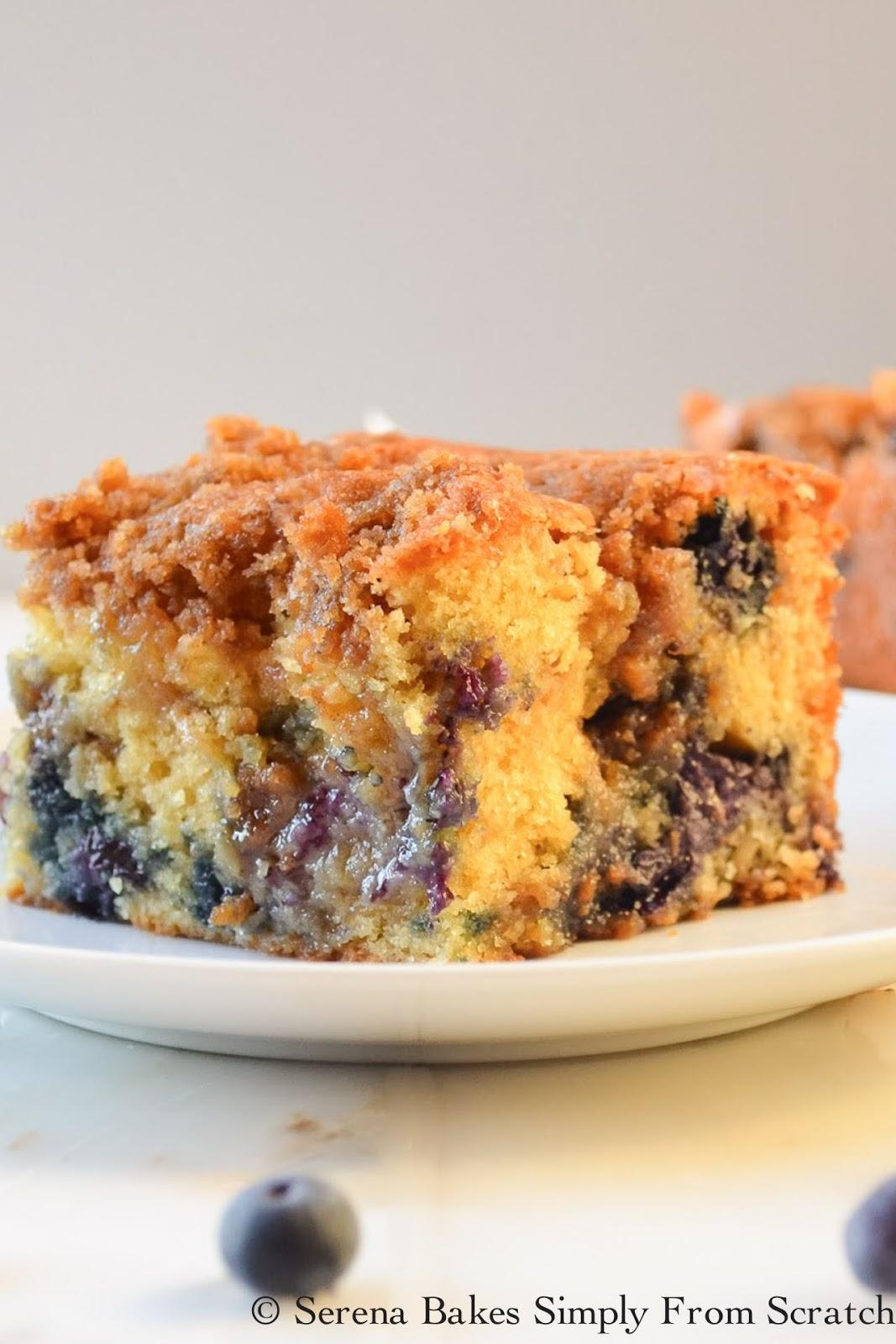 Blueberry Cinnamon Crumb Coffee Cake