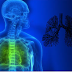 Is Acute Bronchitis contagious? Learn About The Symptoms, Treatment Of Acute Bronchitis Today