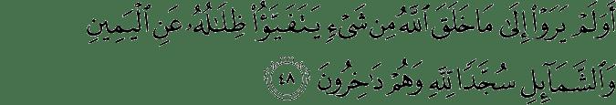 Surat An Nahl Ayat 48
