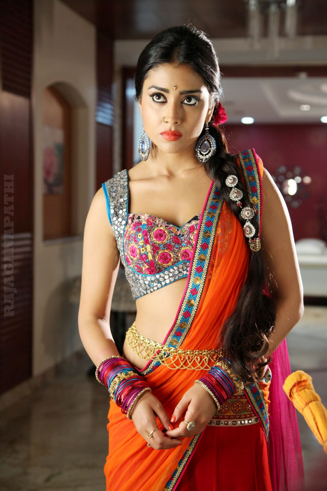 Actress Shriya Saran In Saree New Hot Hq Photos Collection -8782
